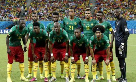 Coupe du Monde – Les lions refusent de partir
