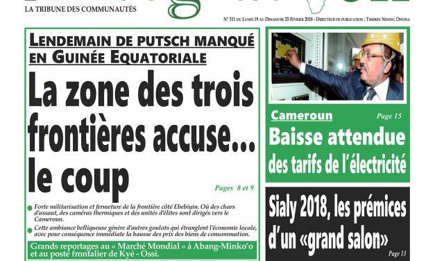 Cameroun: Journal Intégration parution n°311 du Lundi 19 Février 2018