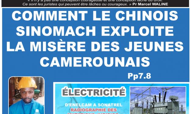 CAMEROUN: JOURNAL CAMERLEX PARUTION N° 002 du Mardi 19 Juin 2018