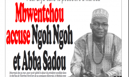 Cameroun : Journal Infomatin parution 05 novembre 2018