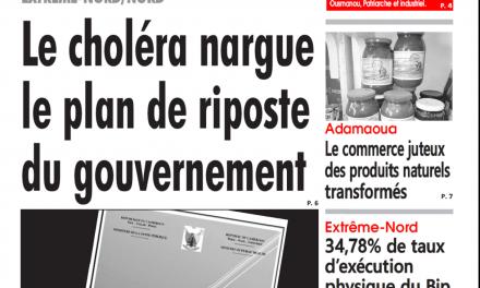 Cameroun : Journal L'œil du Sahel parution 02 novembre 2018