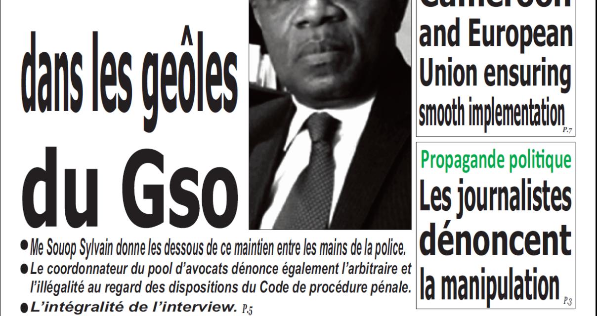 Cameroun : émergence, parution du 4 février 2019