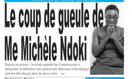 Cameroun: journal le jour du 15 Avril 2019